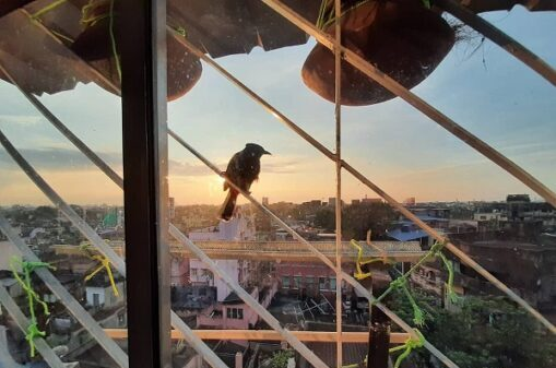 sunset-from-owls-nest-calcutta-homestay